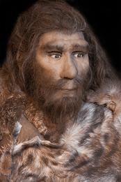 neanderthal.png